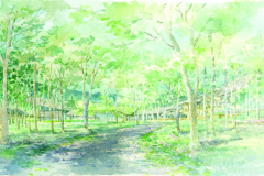 """Perspective View of  """"Finger Forest"""" and Dry  Creek, from Sitting Area  of Dormitory"""